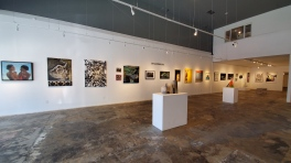 TAG Gallery; Photo credit Kristine Schomaker