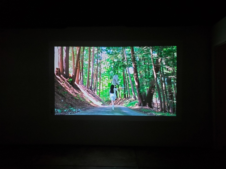 Sichong Xie, _Lake Lonely,_ Elephant Art Space(15)