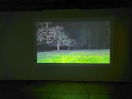 Sichong Xie, Lake Lonely, Elephant Art Space; Photo credit Sydney Walters
